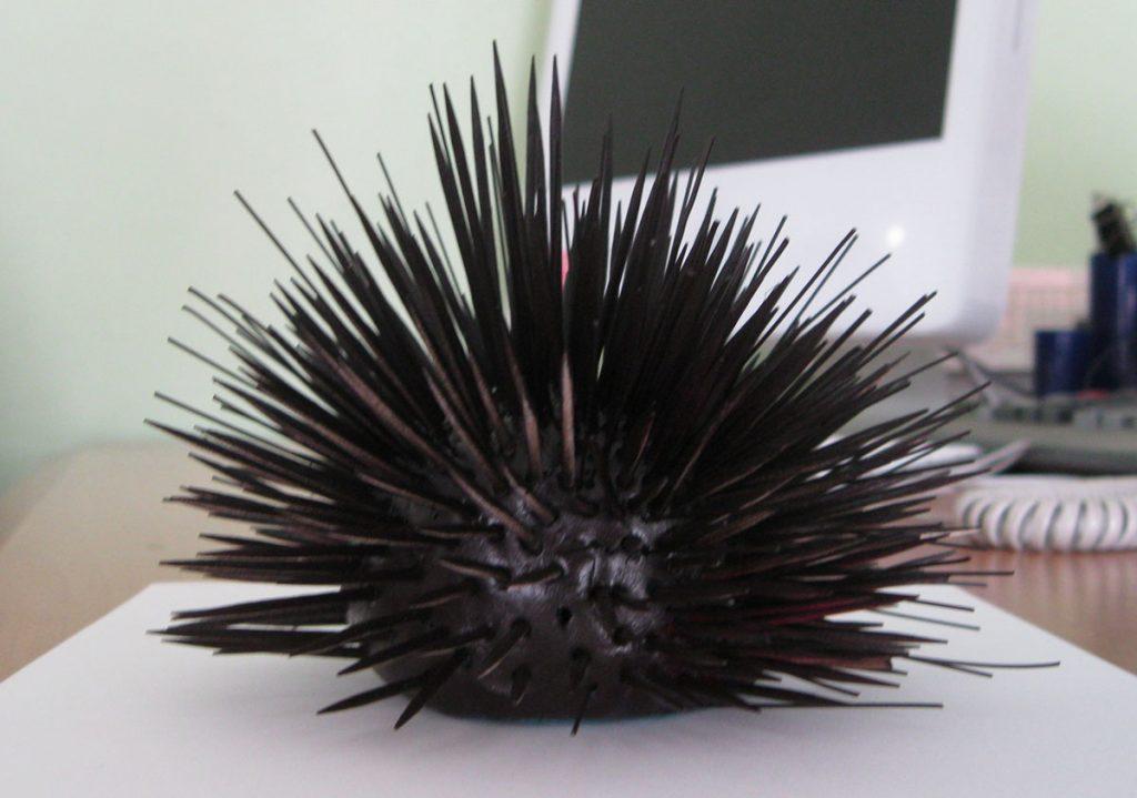 sea urchin bespoke film props