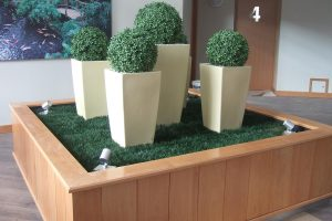 Indoor artificial topiary display