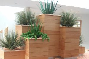 Indoor display of artificial cactus and plants
