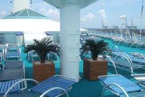 palms and grasses for poolside of cruise ship