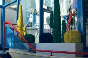 Artificial cactus displays