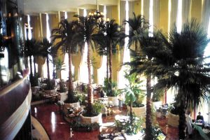 Palm trees for the Ritz in Doha